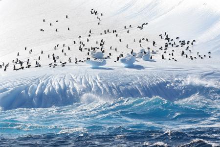 Экспедиция Антарктида 2019/2020