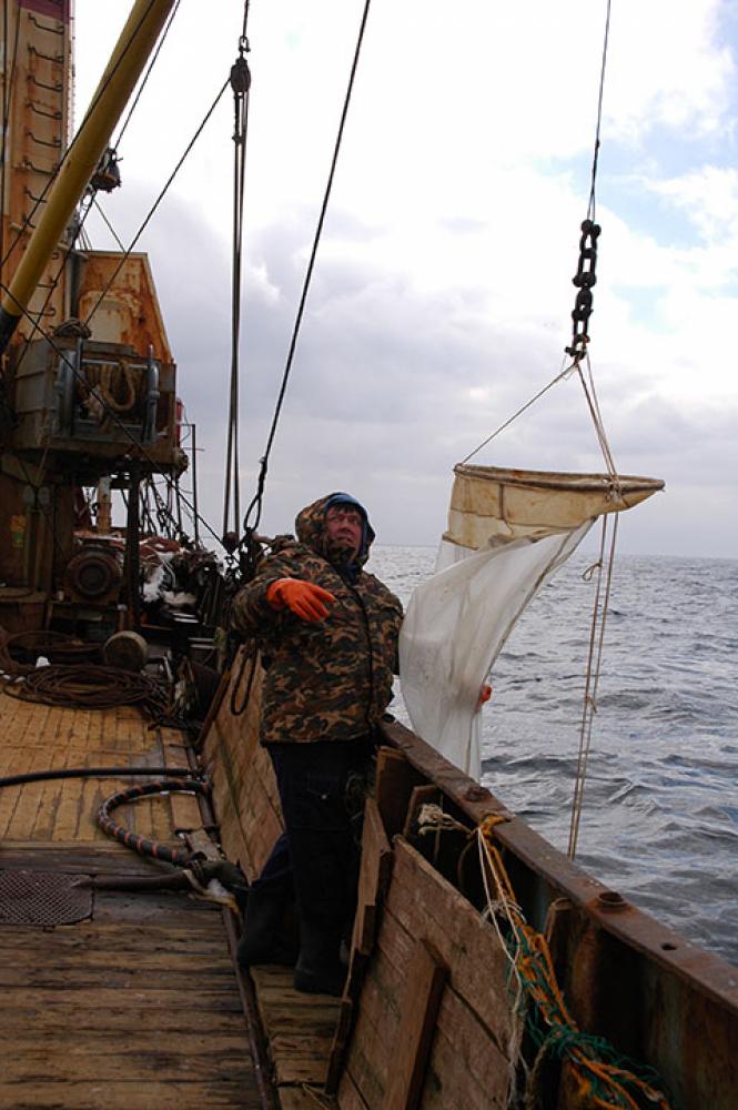 Выполнение ихтиопланктонной станции