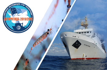 "The scientific expedition ""Antarctica 2019/2020"" starts in November from Kaliningrad"